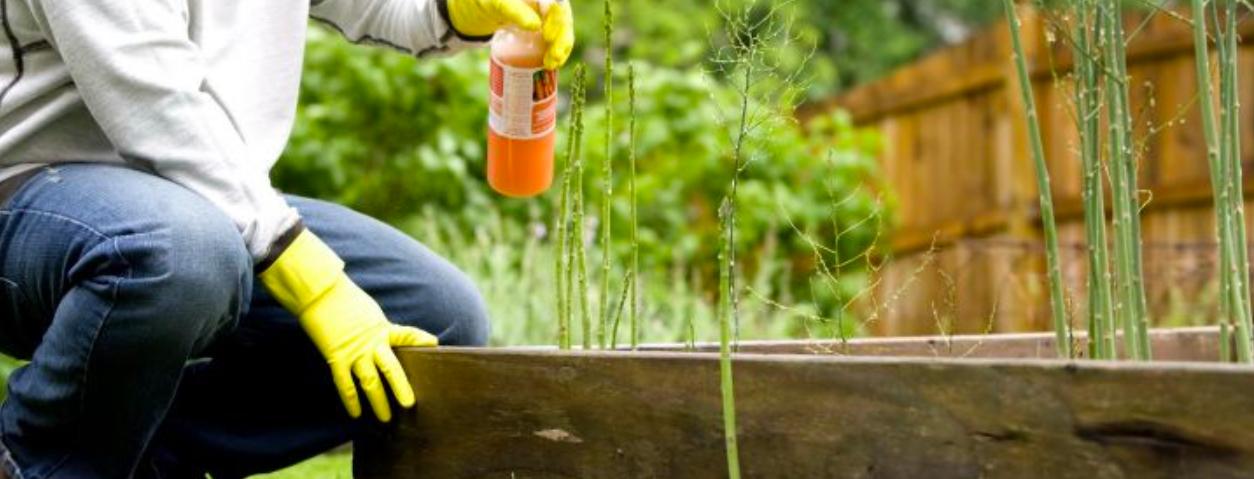 Comment jardiner sans se faire mal ? Astuces et bonnes postures